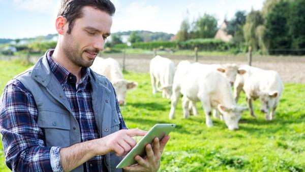 Rachunek bieżący rolniczy