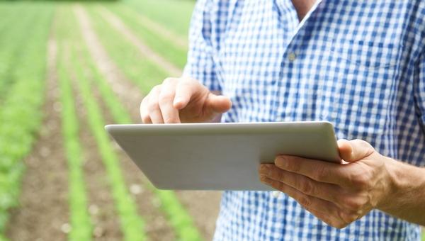 Rachunek bieżący Działy Specjalne Produkcji Rolnej